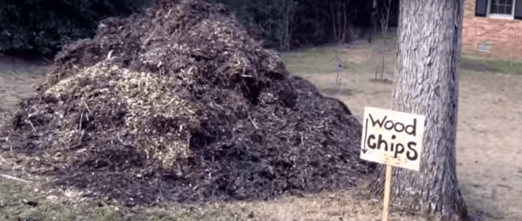 How to get free wood chips for your back eden garden
