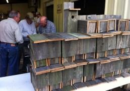 Blue Bird Boxes Built Jan 2013