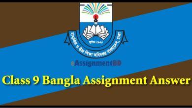 Class 9 Bangla Assignmen