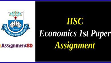 HSC Economics Assignment