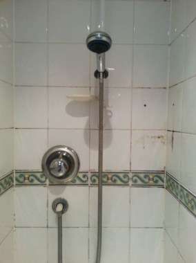 Ceramic Tiled Shower Before Cleaning