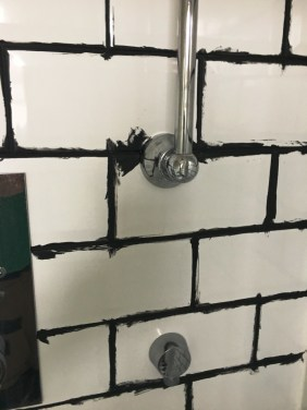 Shower Room Tiles During Grout Colouring in Hove