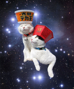 Drift Cat From Space