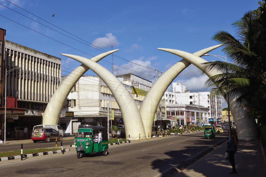 Kenya Mombasa Tusks