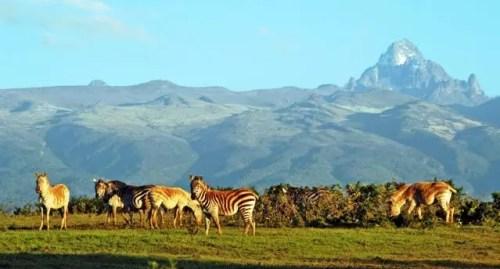 Mount-Kenya