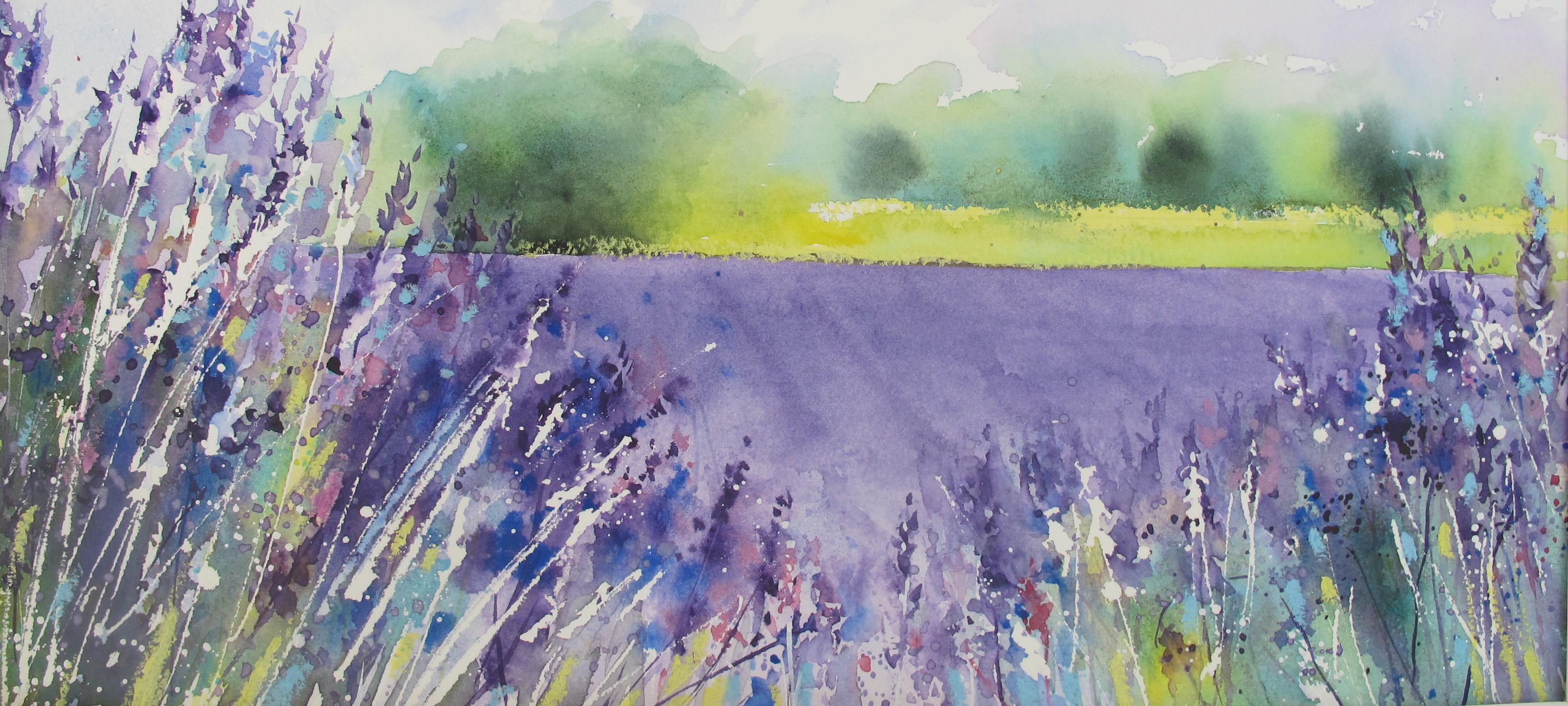 Field of Lavender by Chris Lockwood