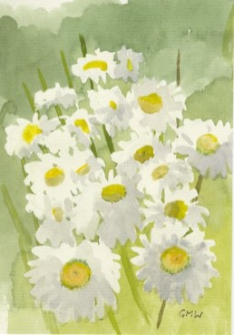 Ox-Eye Daisies by Gillie Whittle