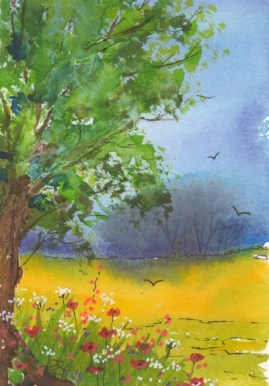 CFA005 Wildflowers by Caroline Furlong