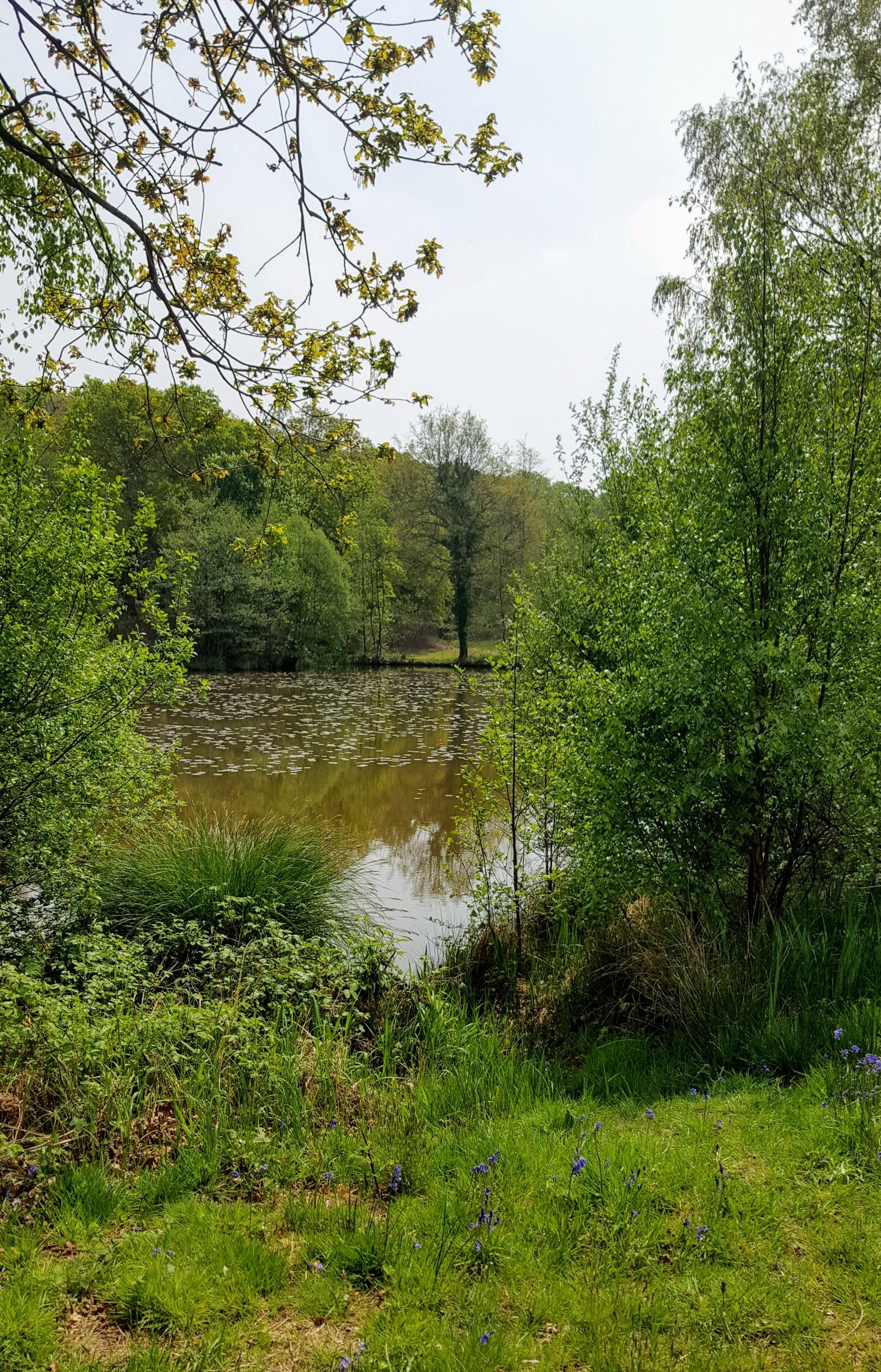 lake at Herstmonceux Castle