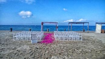 rifkin wedding