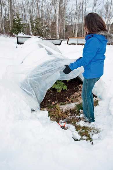 Halifax gardener Niki Jabbour checks on her mini hoop tunnel that lets her grow veggies all winter long. Sheets of plastic let the sun shine in while protecting tender shoots from snow, wind and temperature dips. Photo by Joseph De Sciose