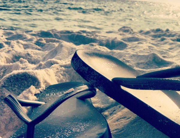 East Coast Mermaid travels to Florida
