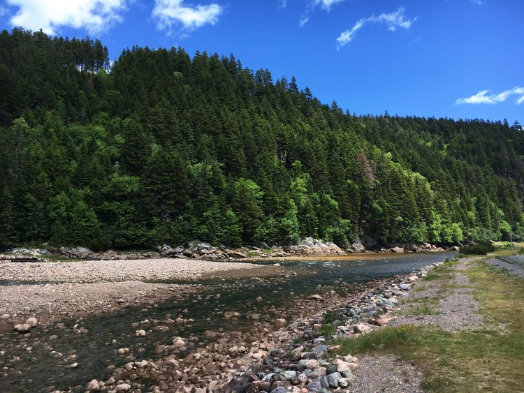 Big Salmon River Lunch Spot