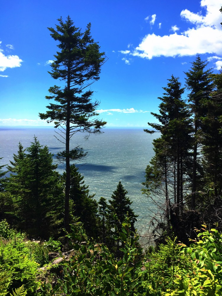 Black Point Lookout 2 - Fundy Trail Parkway
