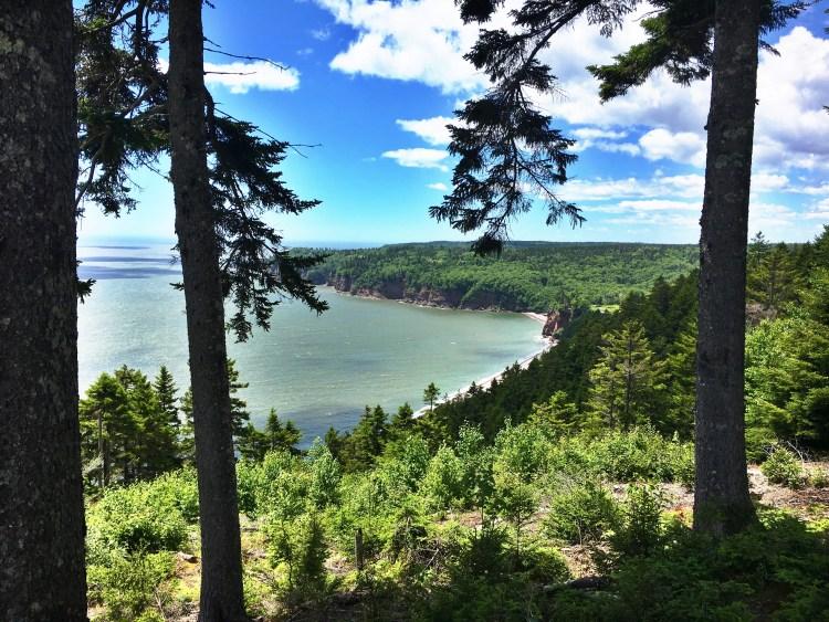 Black Point Lookout 6 - Fundy Trail Parkway