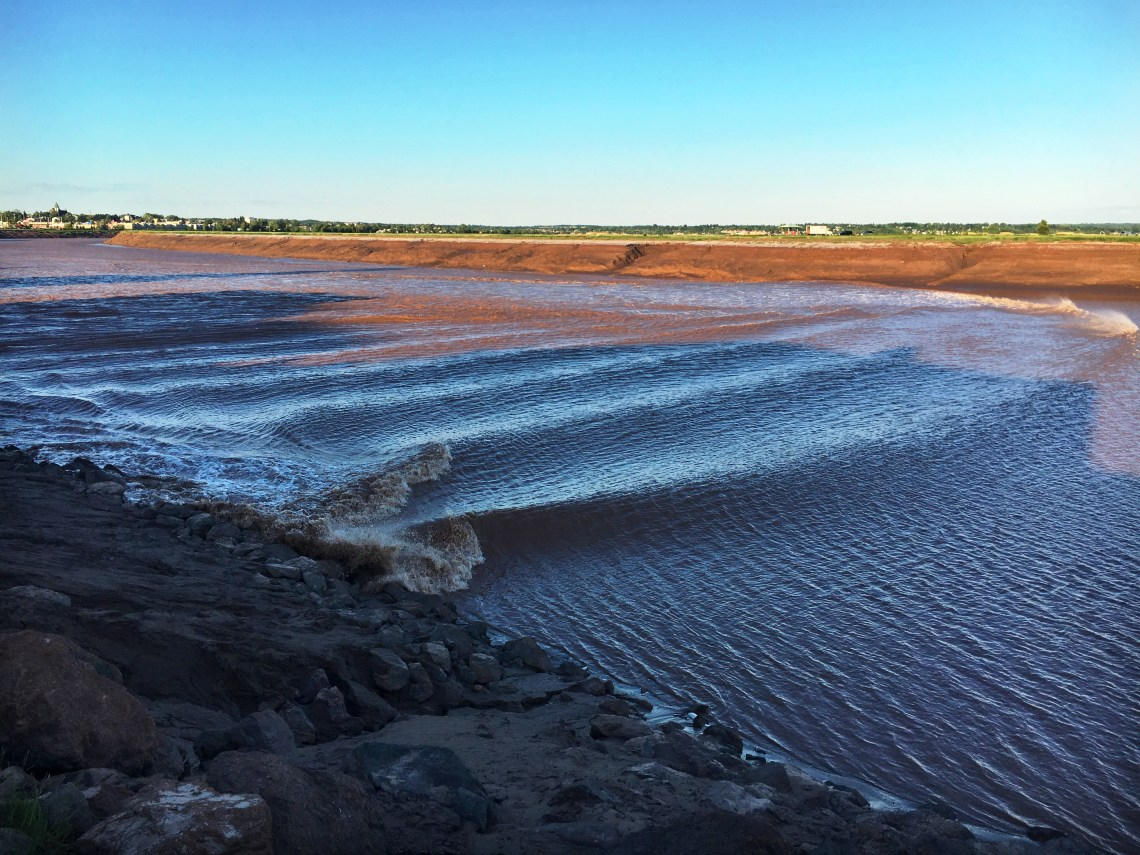tidal bore moncton - east coast mermaid