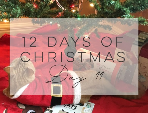12 days of Christmas Day 11