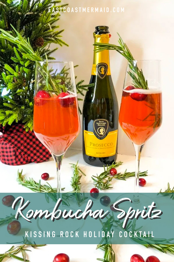 """This holiday season, I'm all about incorporating Kombucha into my holiday cocktails, starting with simple but tasty spritzer or """"spritz"""" as I affectionately call it."""