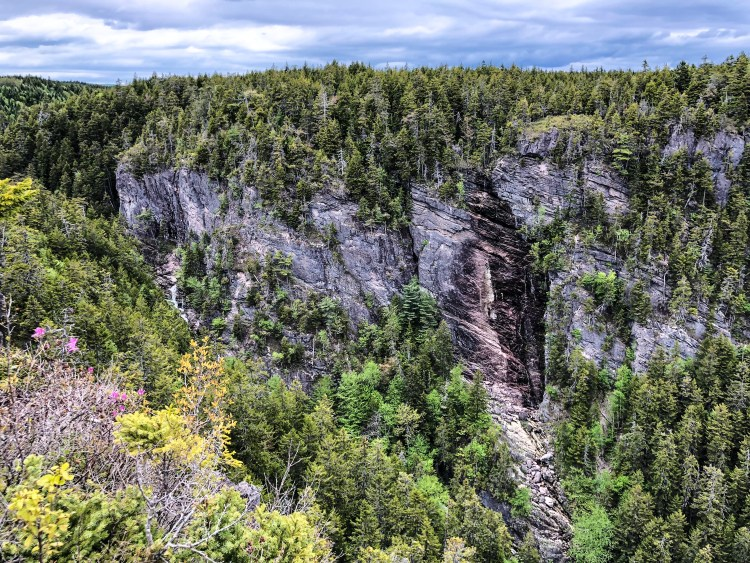 Walton Glen Gorge 2 - Fundy Trail Parkway
