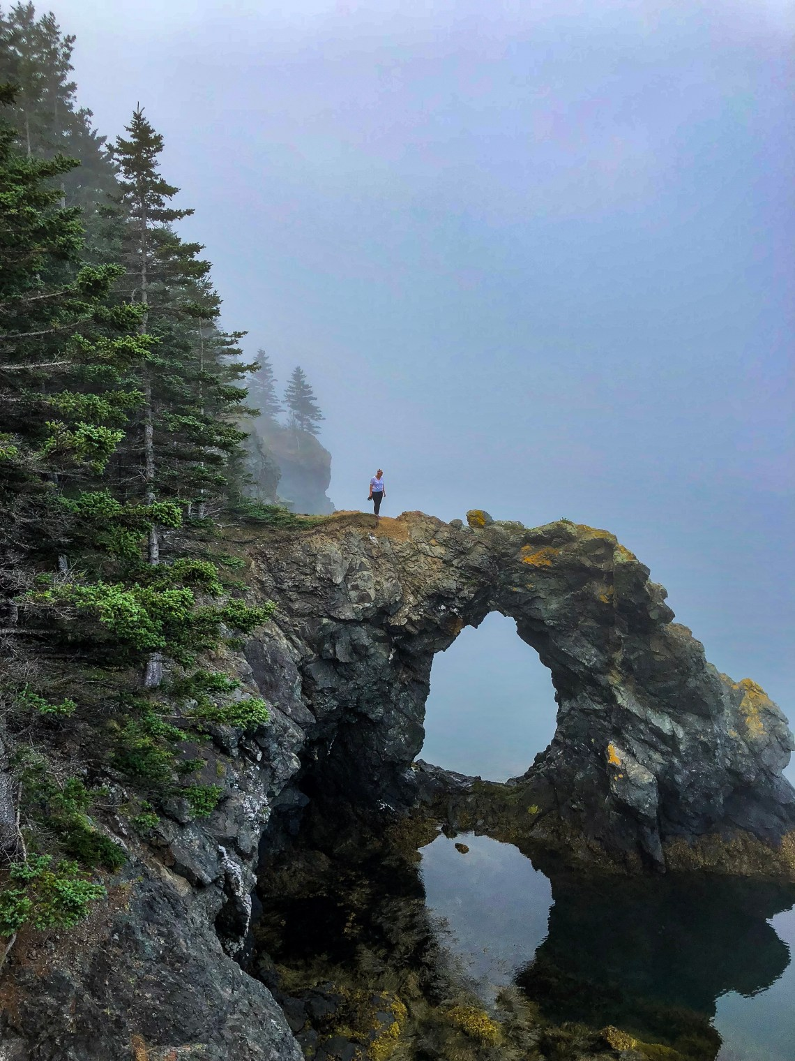 Hole in the Wall, Grand Manan - East Coast Mermaid