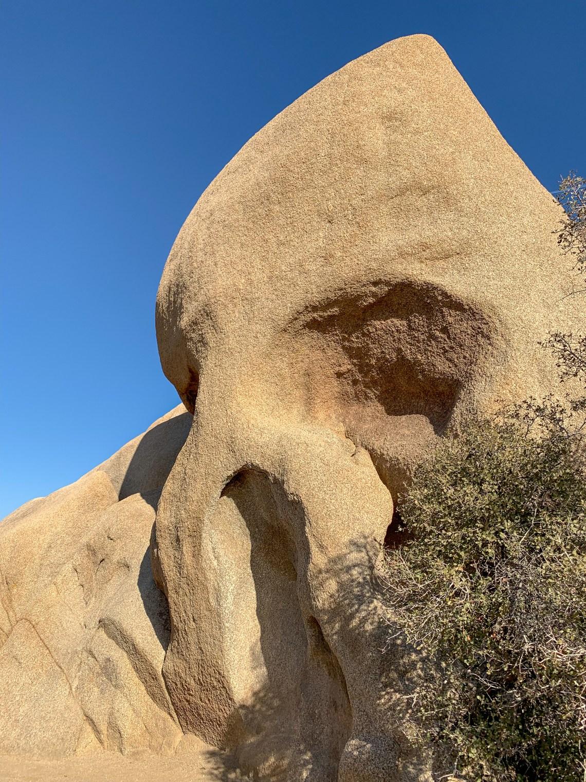 Skull Rock - Joshua Tree National Park