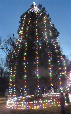 Holiday Lights East Cobb Park