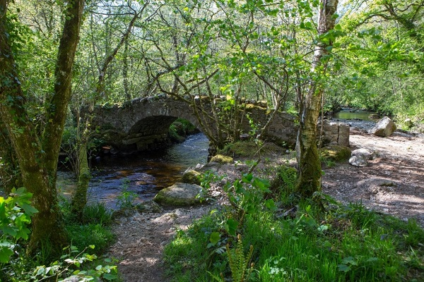 Hisley Bridge crossing the River Bovey (Photo: Paul Moody)