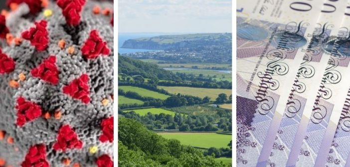 District council launches £2million 'innovation and resilience' fund to boost East Devon businesses in Covid pandemic recovery