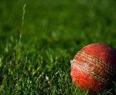 Curtain falls on 2021 Tolchards Devon Cricket League in East Devon