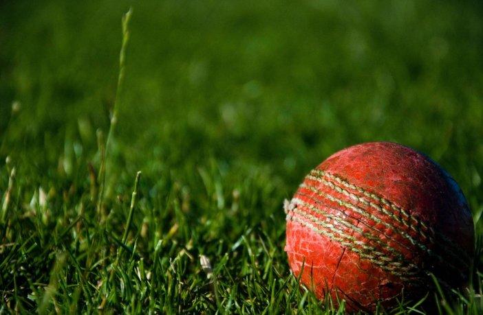 Cricket East Devon Branscombe