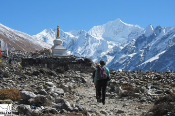 langtang trek trekking in pokhara