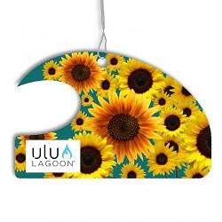 Sunflower-250