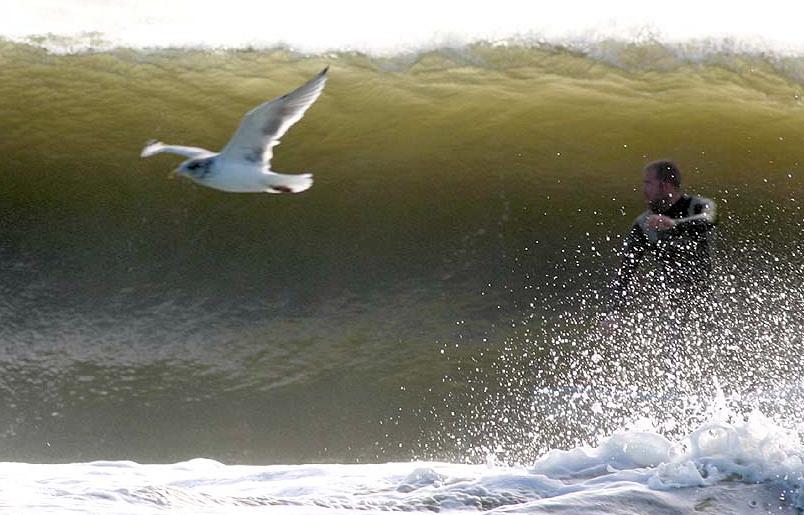 Belmar Surf