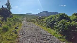 """Concrete Road (aka """"Hydro Track"""") just above the car park at Breanlee at the start of the Coomloughra Horseshoe hike."""