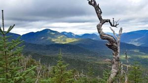 Tremendous views close to the summit of Allen Mountain