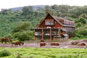 Consider taking this Kenya Safari 6 Days a memorable experience