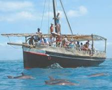 mombasa excursions Day Trips to wasini island