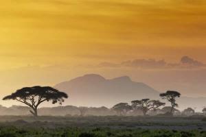 kenya-sunset-on-the-savannah