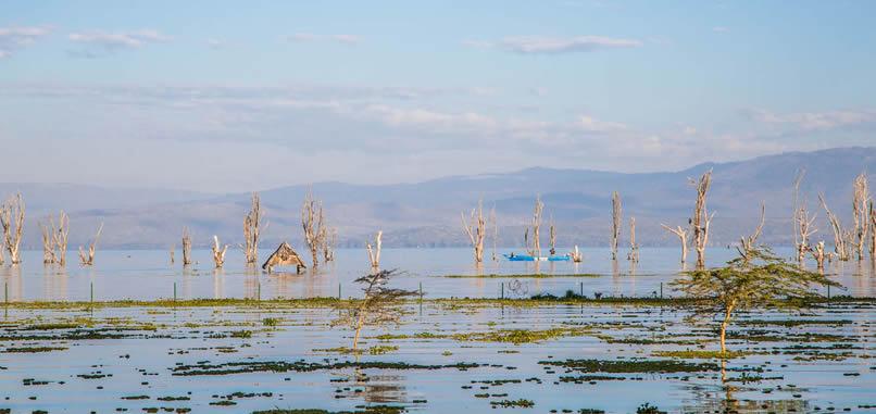 lake-naivasha-resort5