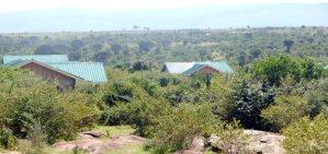 Mara Ardvak Lodge - Masai Mara