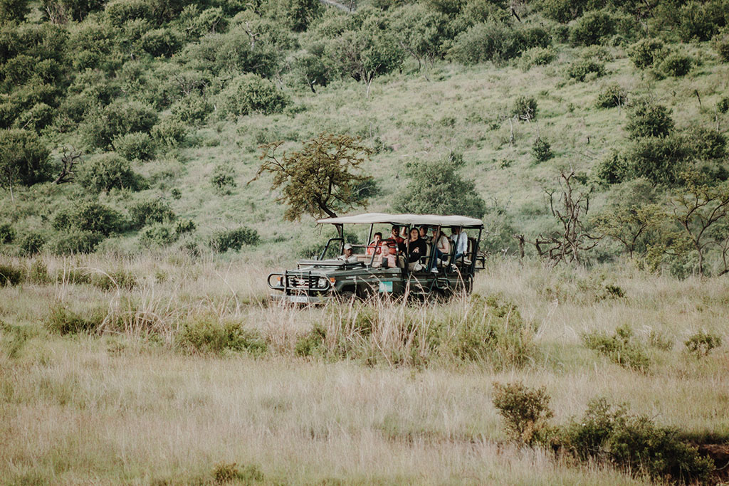 wildlife-game-viewing-drive-lodge-air-safari
