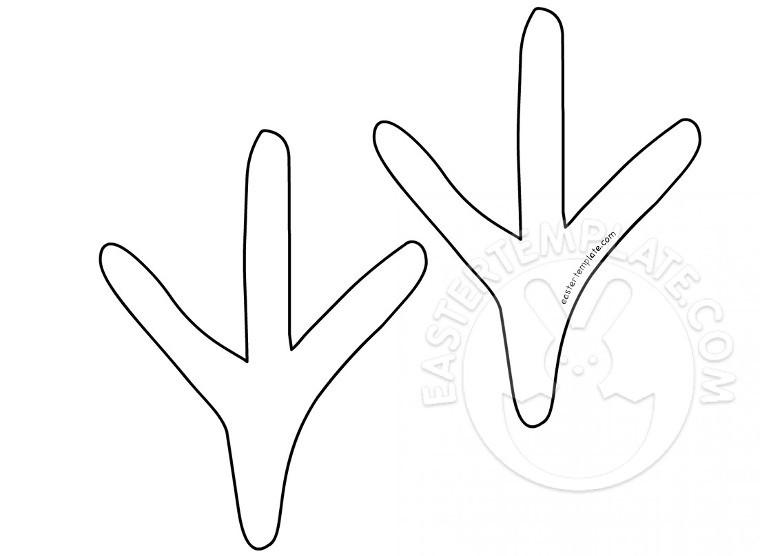 Foot Outline Template