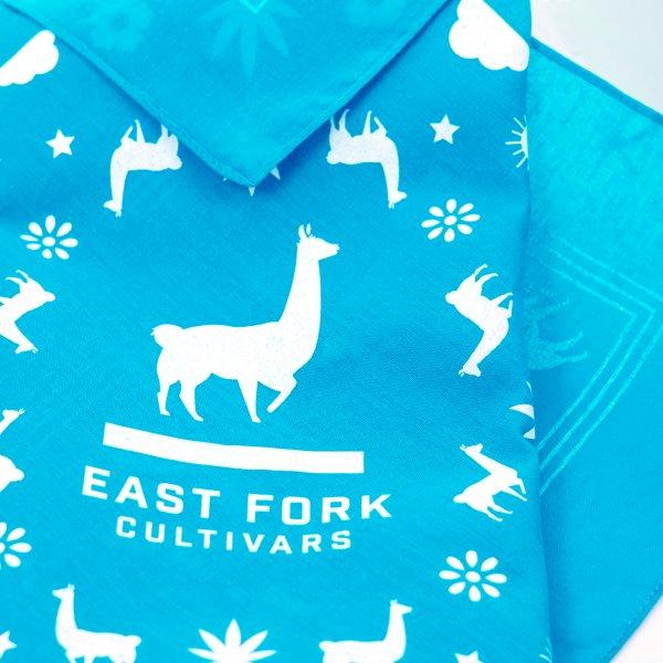 East Fork Cultivars Turquoise Bandana