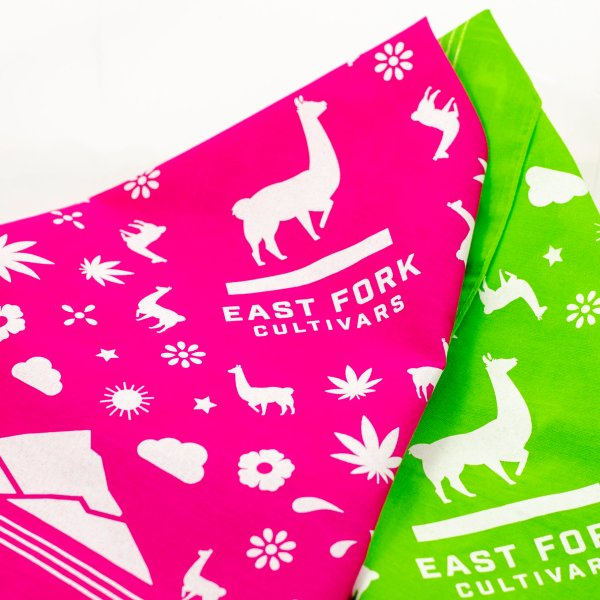 East Fork Cultivars Pink and Lime Green Bandana