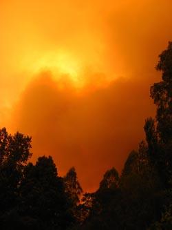East Gippsland fire 9-2-14