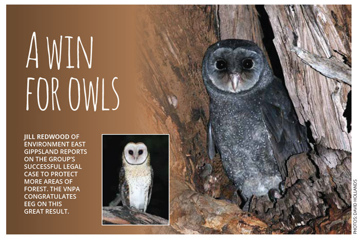 A win for Owls - VNPA Parkwatch September 2015
