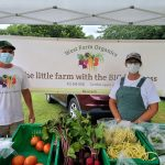 Events: Farmers Market, Final 'Take It Outside' Sunday, House History