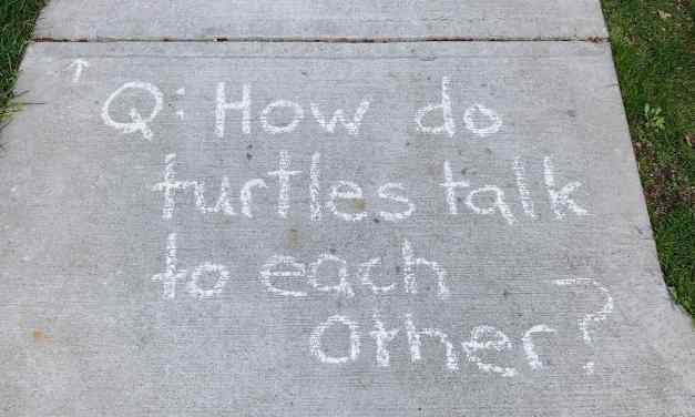 2020: Mystery Sidewalk Riddles Kept Us Guessing