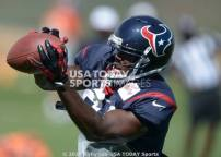 Anthony Denham Houston Texans