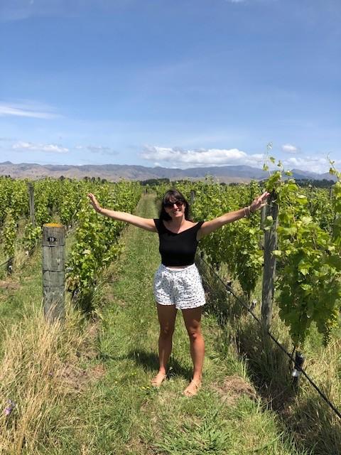 fromm vineyard